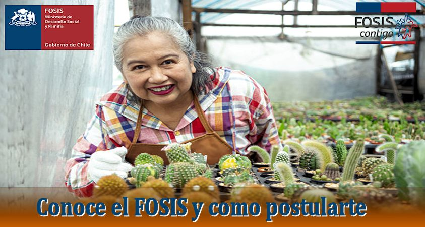 postular al FOSIS